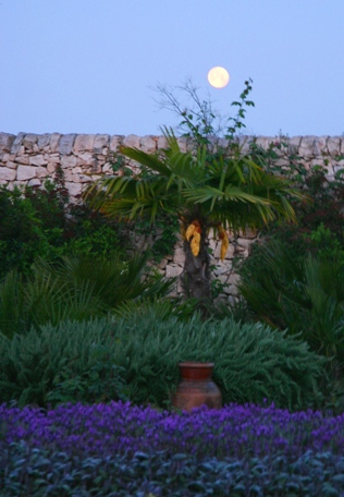 Moon above walled garden