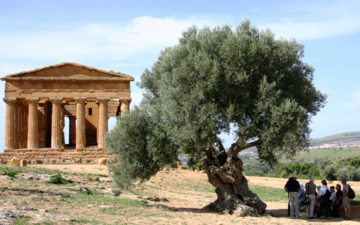 Temple of Concordia Agrigento