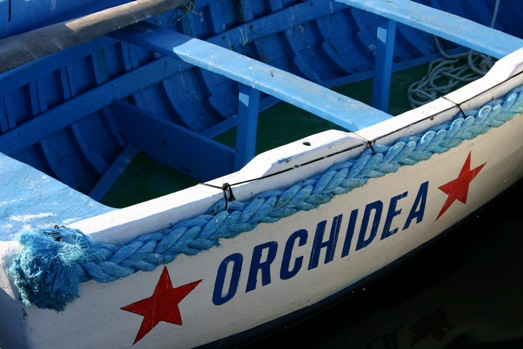 boat named Orchidea